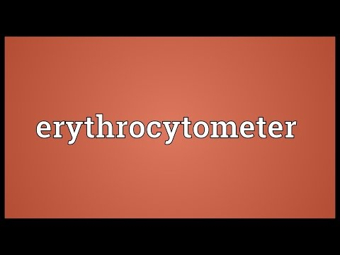 Header of erythrocytometer