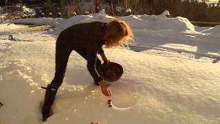 Land Art with Marghanita Hughes (Flowers in the Snow)