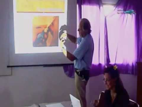 How to give bird eye drops clip beak nails Bali Vet talk #4