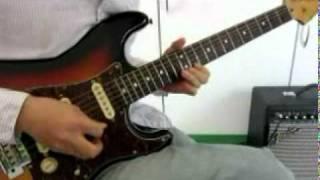 Stevie Ray Vaughan - Mary Had A Little Lamb  (cover)