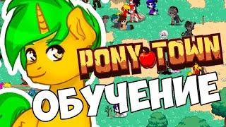 pony Town: ОБУЧЕНИЕ! КАК ИГРАТЬ?!