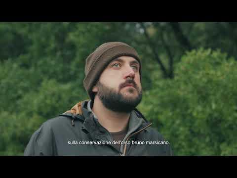 L'invasione dell'uomo nella terra degli orsi #SOSORSO