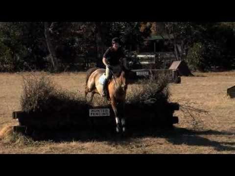 The United States Pony Club