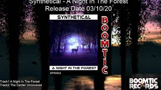 Synthetical   A Night In The Forest