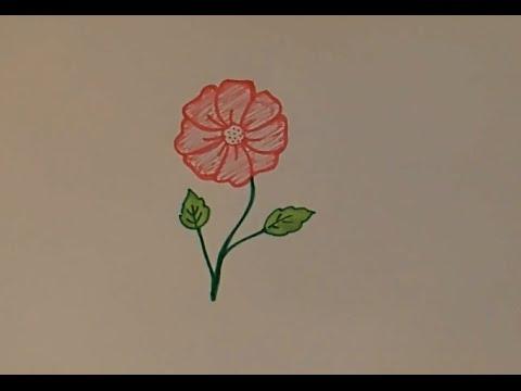 Рисуем, Цветок, рисунки карандашом, , colour pencil drawing, flower