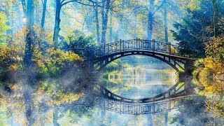 """Peaceful Relaxing Instrumental Music, Clam Meditation Music, """"Bridges to Nature"""" By Tim Janis"""