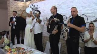 Ub - svadba Dragoljuba (Cila) i Sanje Jabucanac opasna svirka