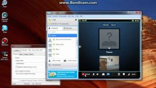 Bandicam: Skype Video Recording Sample (Rectangle), full/registered version