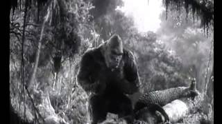 King Kong (1933) - King of Skull Island (by THE CRIMSON GHOSTS)