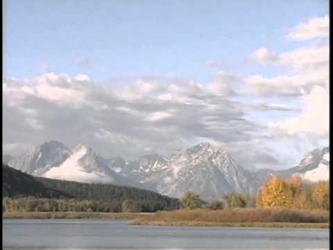 Yellowstone National Park Custom Wildlife Tours