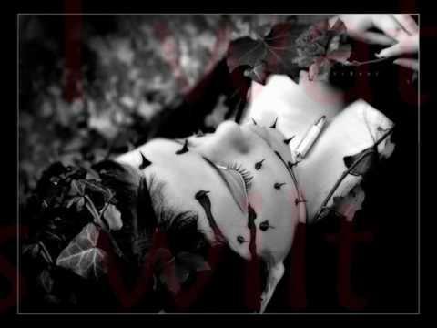 Trapt - Black Rose ( with lyrics )