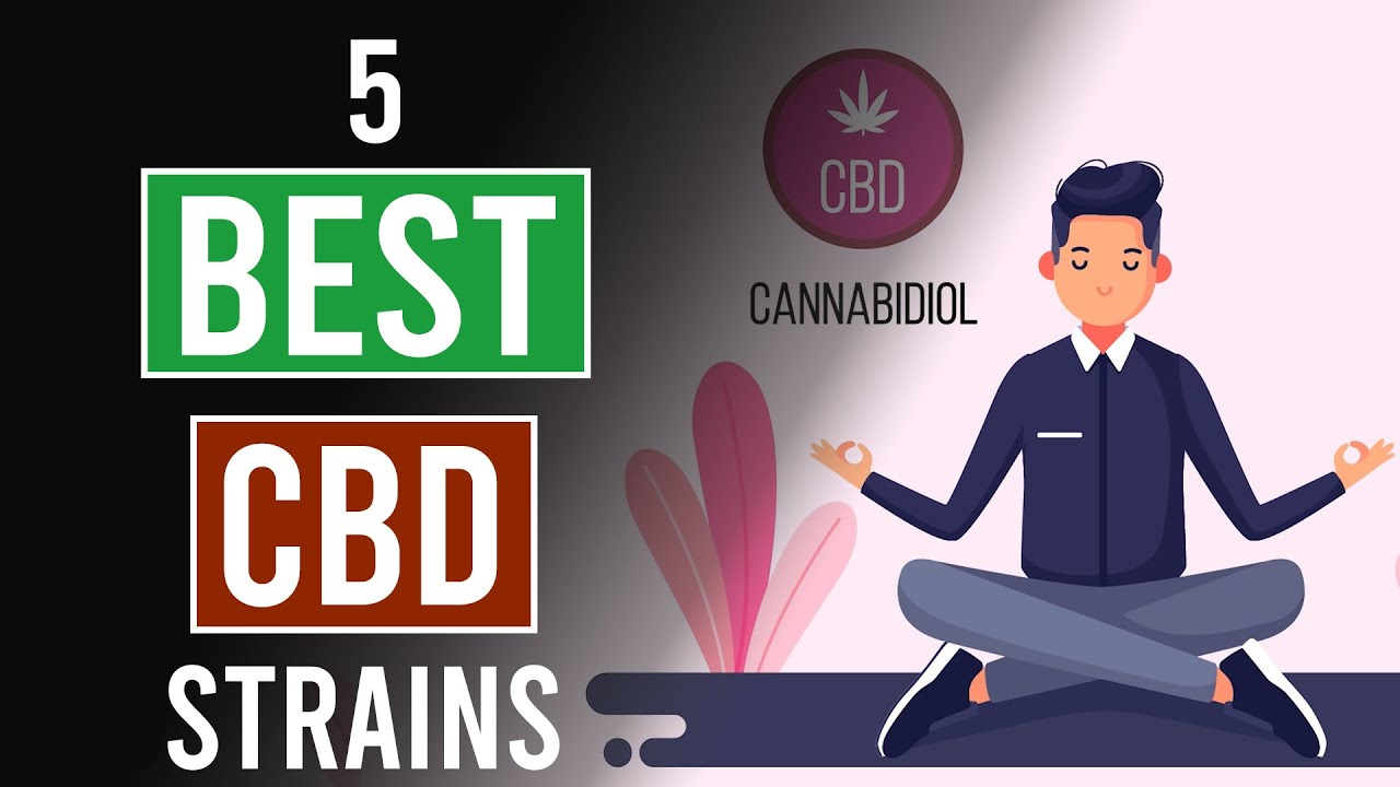 5 Best CBD Cannabis Strains!