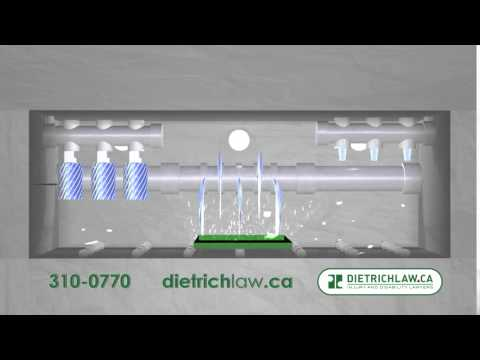 Dietrich Law - Kitchener Personal Injury Lawyers -  Spring (part 2)