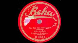 Ja, der Sonnenschein / Bohème-Orchester mit Refraingesang