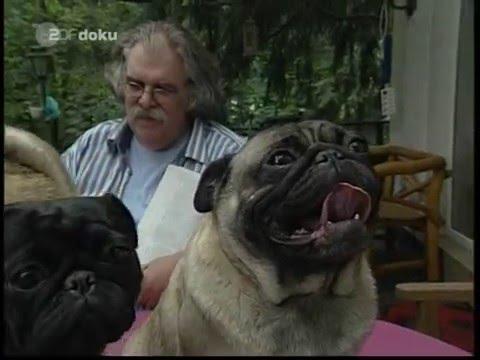 Mein Freund, der Mops   ZDF Doku, 2007