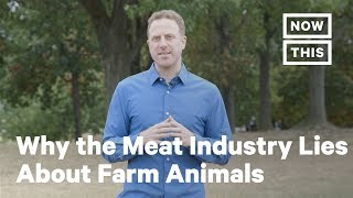 What the Meat Industry Doesn't Want You to Know About Farm Animals   Opinions   NowThis