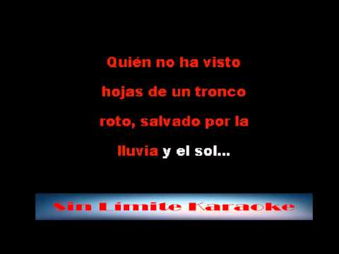Tengo derecho a ser feliz  - José Luis Rodriguez - Karaoke Full
