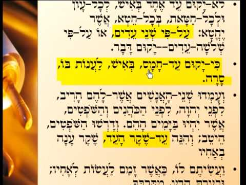 תלמוד בבלי - גמרא - בצורה שלא הכרתם שיעור 2 Talmud Learning Tora4all