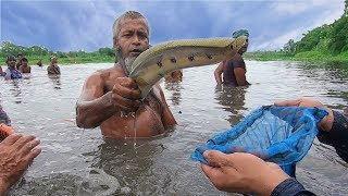 Really Amazing Traditional Fishing Video Real Fish Hunting