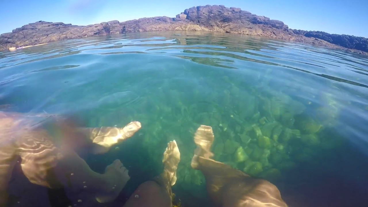 Bushrangers Bay Pool Diving - YouTube