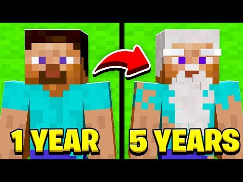 If Minecraft Skins Got OLDER