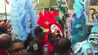 Mardi Gras with Big Chief Monk Boudreaux new HD.MOV