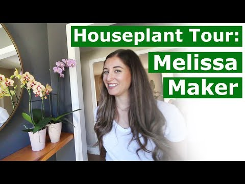 Houseplant Tour: Melissa Maker