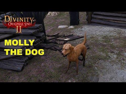 Divinity Original Sin  Molly The Dog