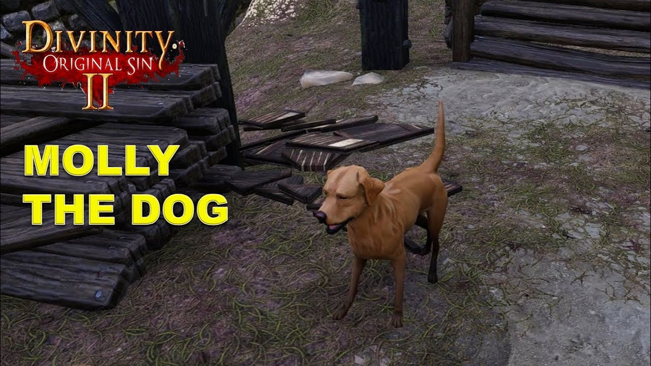 Molly the dog in Driftwood Port (Divinity Original Sin 2)