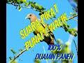 Suara Pemanggil Punai Walik Cocok Buat Mikat Patut Di Coba  Mp3 - Mp4 Download