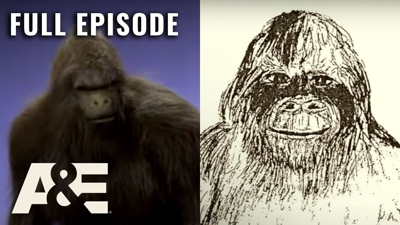 Download MonsterQuest: GRASSMAN STALKS OHIO (S2, E4) | Full Episode | History