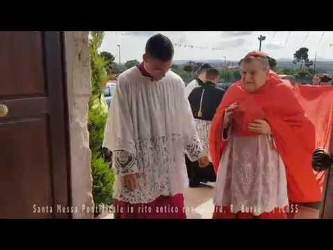 Cardinale R.L. Burke - Ingresso Santa Messa Pontificale in rito antico