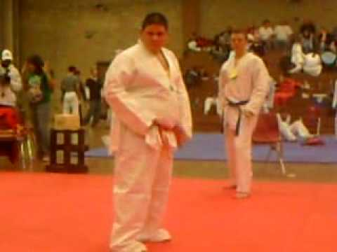 Fat martial arts