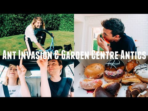 ANT INVASION & GARDEN CENTRE ANTICS
