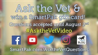 Ask your horse health questions for our September 2018 Ask the Vet video!