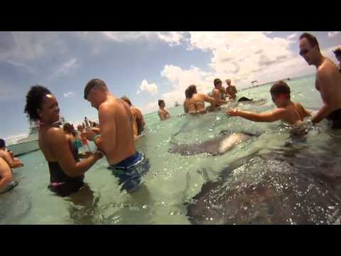Carnival Cruise - Stingray City