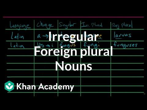 Irregular plural nouns |– foreign plurals | The parts of speech | Grammar | Khan Academy