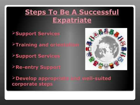 Immigration Company For An Expatriate Services Division Pass