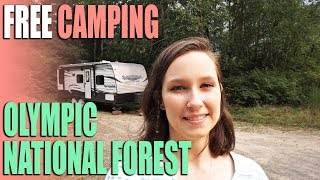 FREE Camping in the Olympic National Forest - Beaver Lake Campsite Review