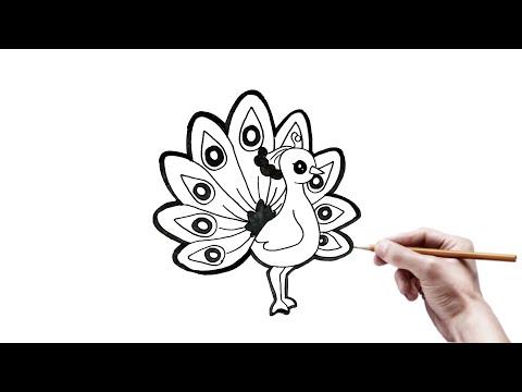 Menggambar Mudah Fauna Burung Merak Youtube