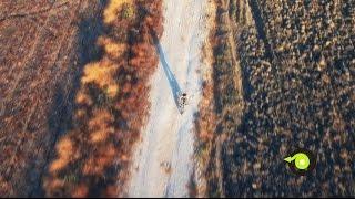 Flebi: Folding & Light E-Bikes