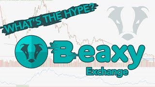 Trading Crypto On Beaxy Exchange - WHY BEAXY