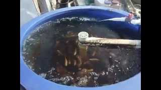 NW Tilapia Aquaponics System, Biofilter,Grow Tables