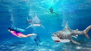Shark 3D Hunting: Best Hunting Game 2018