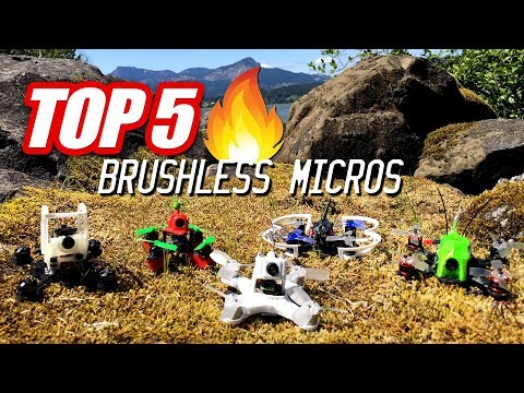 TOP 5 BRUSHLESS MICROS