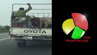 Pakistani Vey Funny Video 2016 By Pakistani Hub 2020 640x360MP4 360p