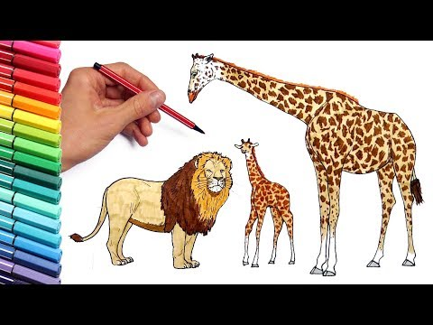 How to Draw Wild African Animals Elephant Lion Giraffe Color Pages for Childrens