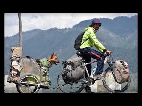 Can Dog be a Good Travelling Partner? - Bhola Shola Films