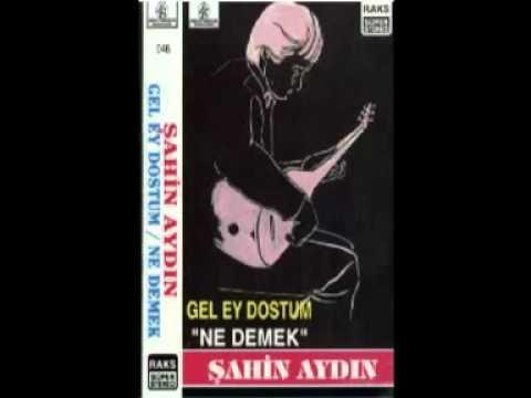 Şahin Aydın - 03 - Fert Olur