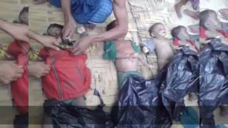 More Rohingya Children Drowned While Fleeing CURRENT ATROCITIES